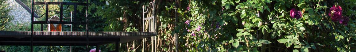tuin alkenrode