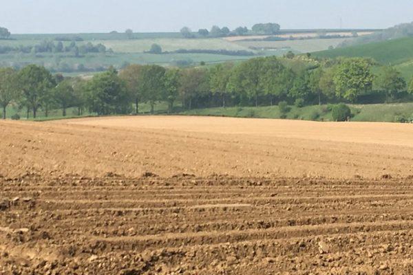 Elkenrade boerenveld